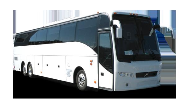 Bus/ Coach