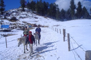 North India Summer Tour Package By Pack N Go