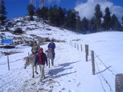 North India Summer Special Tour Package By Pack N Go Holidays