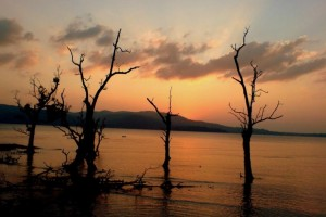 Romantic Getaway Tropical Andaman Tour Package from Cox & Kings