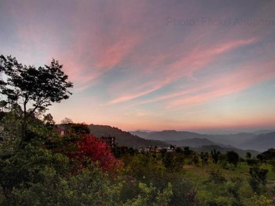 STAY AMONG THE CLOUDS AT KASAULI RESORT