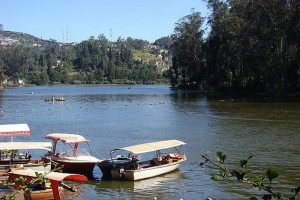 Ooty Christmas Packages from Ashex Tourism