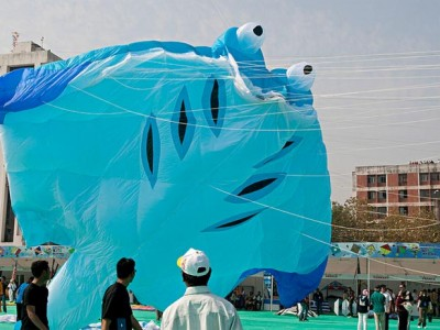 Enjoy Kite Festival Gujarat from Travel Guru