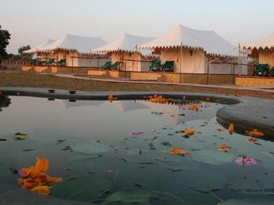 Mirvana Nature Resort Jaisalmer Package from Groupon