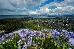 Exciting New Zealand City Tour Package
