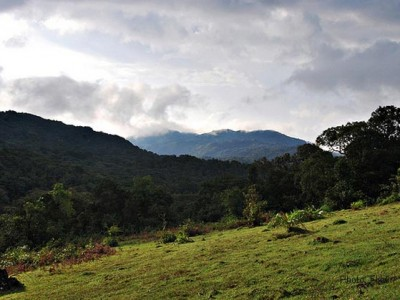 Yedamakky Cottage Coorg Package from Groupon