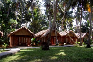 Sea Shell Beach Resort Havelock Island Tour Package