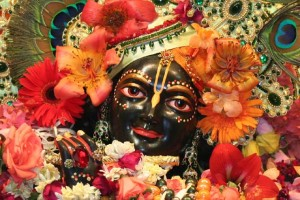 Vrindavan, Mathura Darshan Tour Package