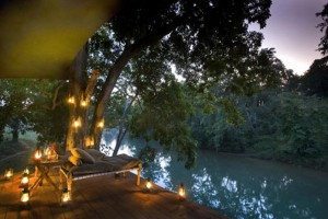 Taj Safaris Package from via