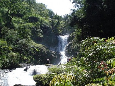 Domestic Southern Getaways to Coorg from SOTC