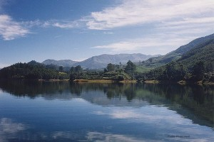 Celebrate christmas & New Year In Munnar Package With Cox And Kings
