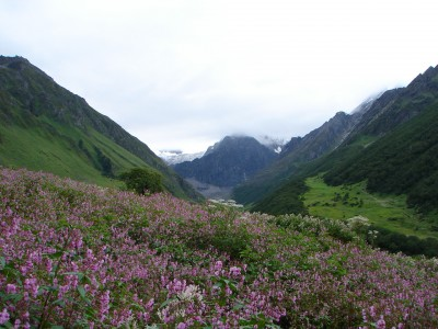 Hemkund- The Valley Of Flower Yatra