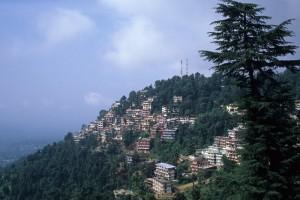 Shimla Hotel Shingar Weekends Tour Package