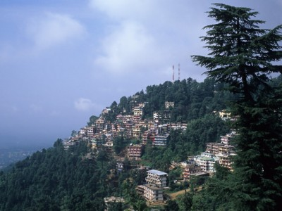 Shimla Hotel Shingar Weekends Tour Package