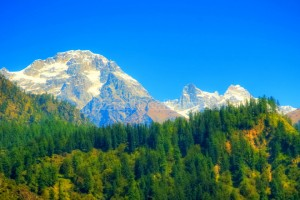 Himachal Special Tour Package