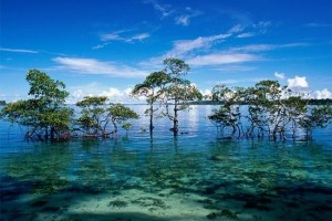 Romantic Holiday Package to Andaman