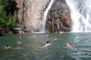 Magical Goa with Dudhsagar Falls Tour from Cox & Kings