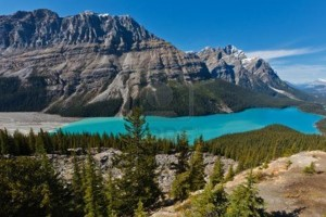 5-Day Canadian Rockies Tour from Vancouver/Seattle from taketour