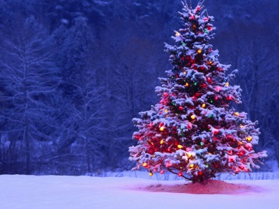 Christmas Holiday Package from fairmont