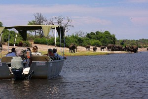 Wild Elephant Valley Tour Package From Ezeego1