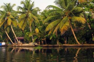 Discover South India Tour Package From Compass
