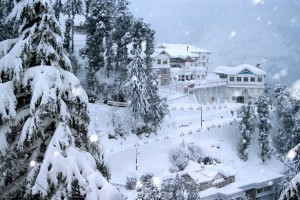 Best of Shimla Manali Tour Package From Travel Duniyaa