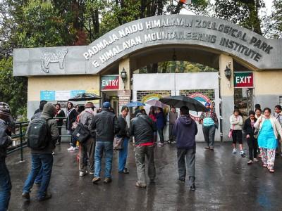 Mesmerising Darjeeling Tour Package From Bindass Holidays