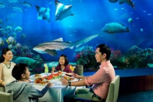 5 Days Surreal Singapore Fusion Package From Thomas Cook