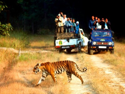 Nanital & Jim Corbett Travel Package from Kesari Tour