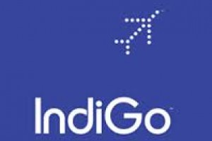 Get Rs 1000 OFF On Business Packages From Indigo