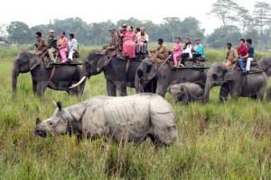 Amazing Assam Tour Package By Yatra