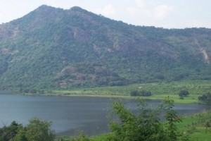 Splendid Hills Of Tamil Nadu Tour Package