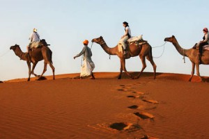 6 Days Thar Desert Odyssey Tour Package