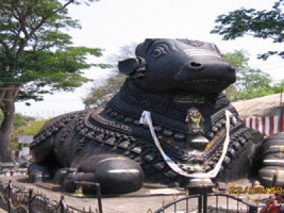 Fascinating South India Tour Package By SOTC