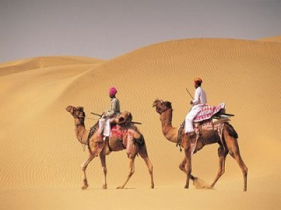 Camel Safari Tour Package By Traveloclick