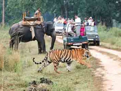 Exotic Madhya Pradesh Tour Package From Vacations Exotica