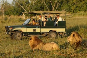 5 Days Kenya Wildlife Safari Package
