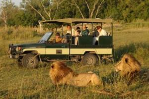 5 Days Kenya Wildlife Safari Package