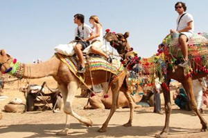 Fabulous Rajasthan Tour Package from SOTC