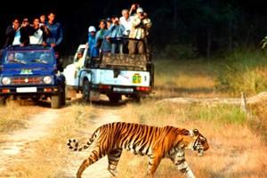 Best of Uttarakhand Tour Package By Skylark Adventure Tours