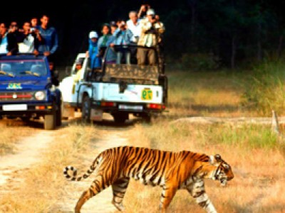 Best of Uttarakhand Tour Package By Skylark Adventure Tours