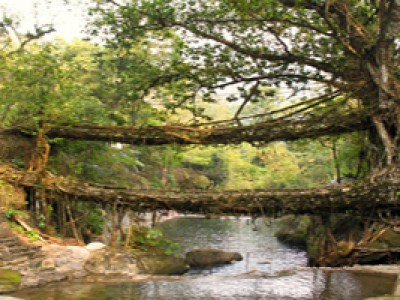 Amazing Shillong and Cherrapunji Tour Package By Yatra