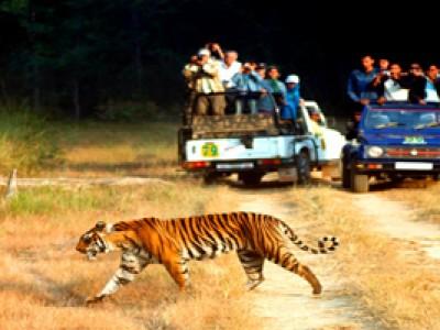 Explore Unimaginable Uttarakhand Tour Package By Goibibo