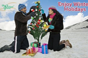 Enjoy Winter Holidays With Orchard Greens, Manali