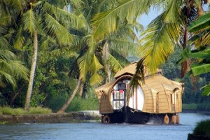 Explore Wilderness Kerala Tour Package With Thomas Cook