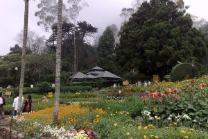 Explore Kodaikanal with Ooty Tour Package