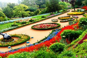 Mysore, Ooty Honeymoon Tour Package