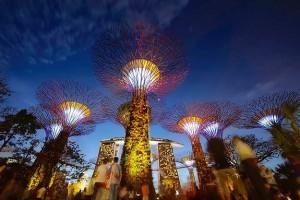 Romantic Singapore Honeymoon Tour Package With Kesari Travels