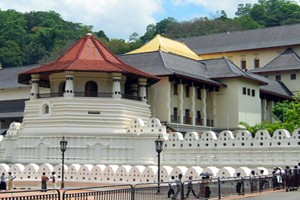 Colombo Kandy Tour Package