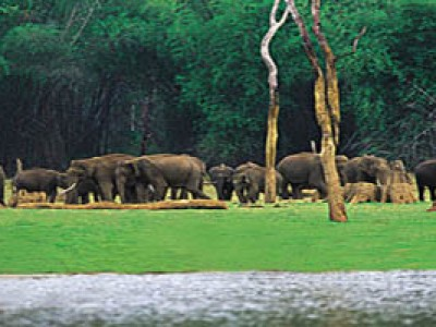 Breathtaking Kerala Tour Package By Thomas Cook